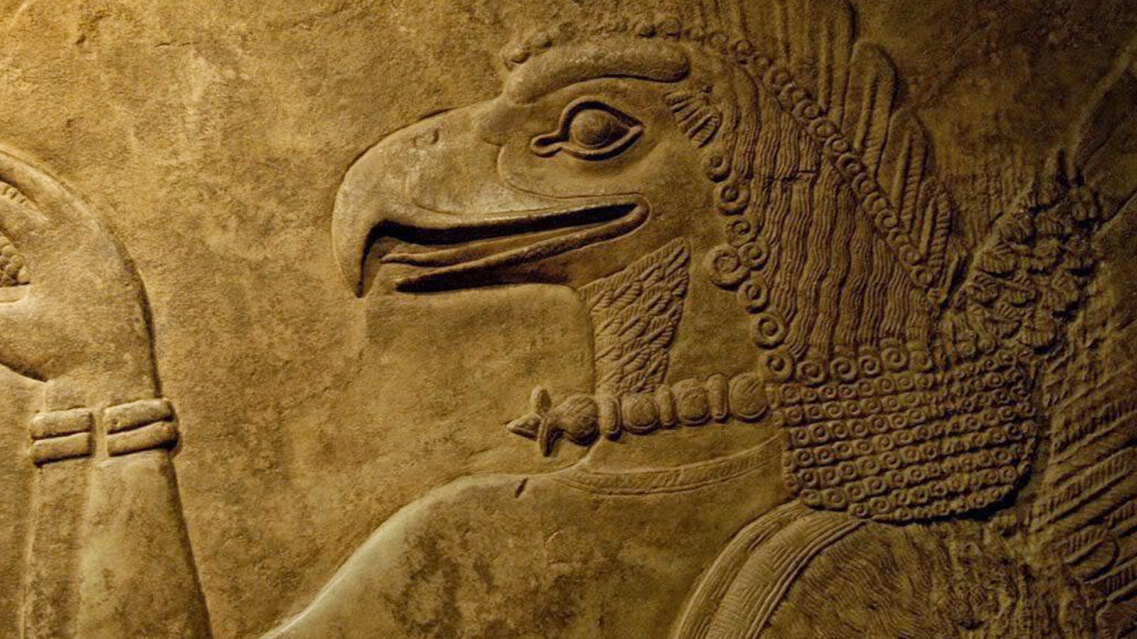 Anunnaki Helmeth Winged Suit Bird - curious