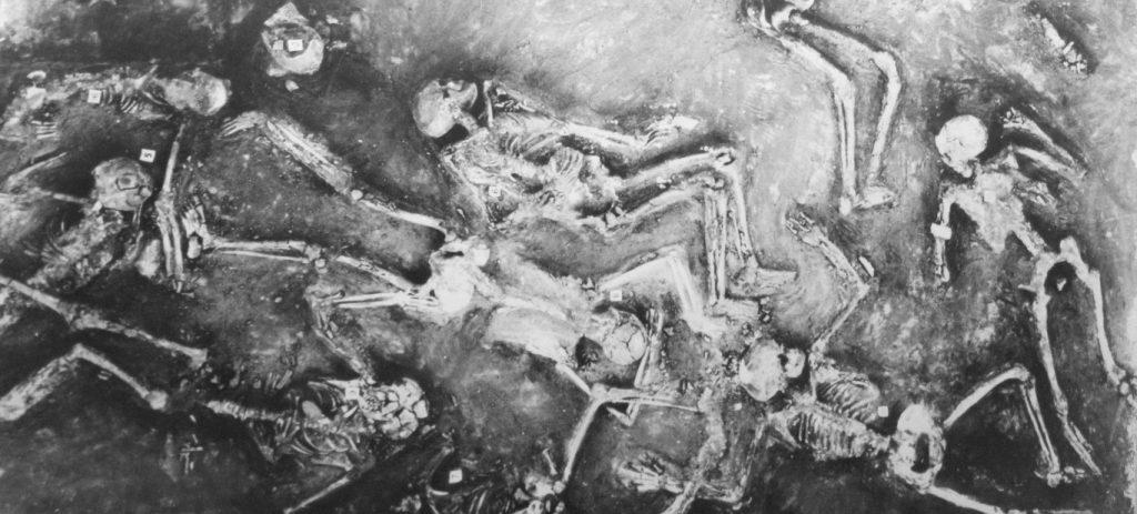 Mohenjodaro 44 Skeleton In Single Room F Medium 1024x463 - curious