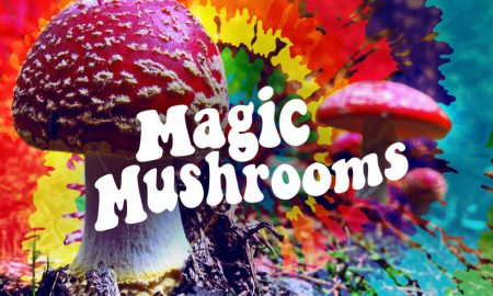 magic mushrooms lead image3 450x270 - curious