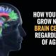 brain cells 80x80 - curious