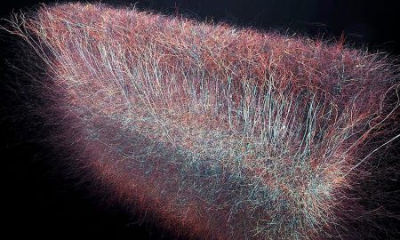 universe 450x270 - science
