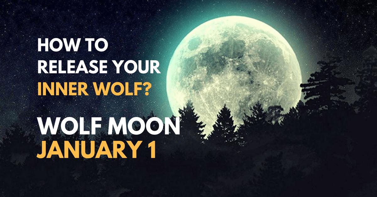 wolf moon - zodiac, self-improvement