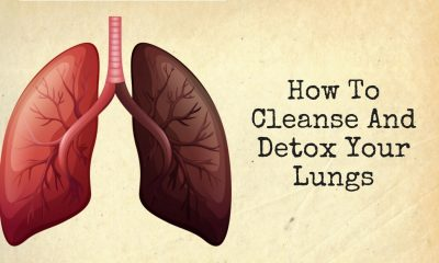 How To Detox And Cleanse Your Lungs 1 400x240 - health